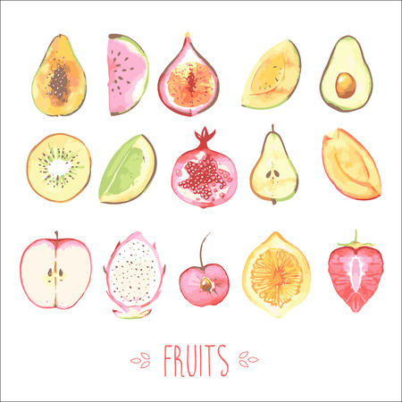 lemon lime: Fruits Illustration