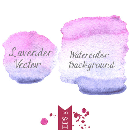 ilustration and painting: Lavender watercolor vector background Illustration