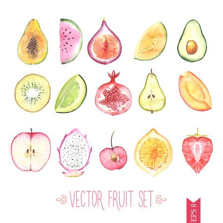 Watercolor vector fruit set Vectores