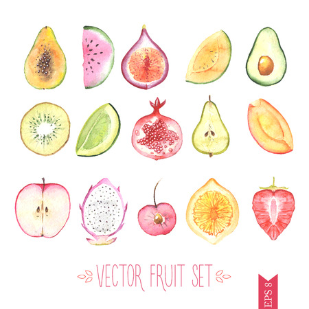 Watercolor vector fruit set Illustration