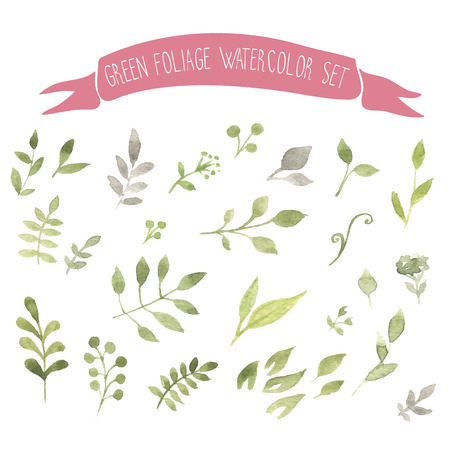 Green foliage watercolor vector set Иллюстрация