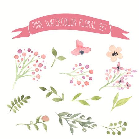 feuillage: Vecteur d'aquarelle rose floral ensemble