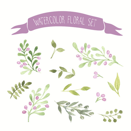 branches with leaves: Olive colored watercolor vector floral set