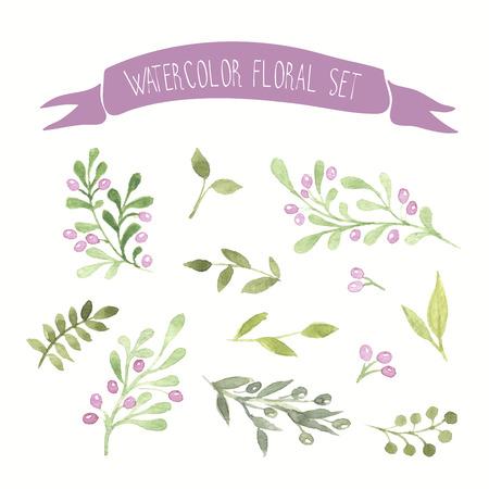 Olive gekleurde aquarel vector floral set