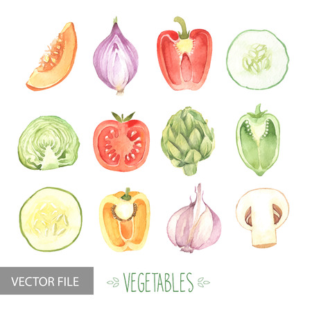 icon red: Watercolor vegetables organic vector set