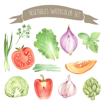 Other fresh vegetables watercolor vector set