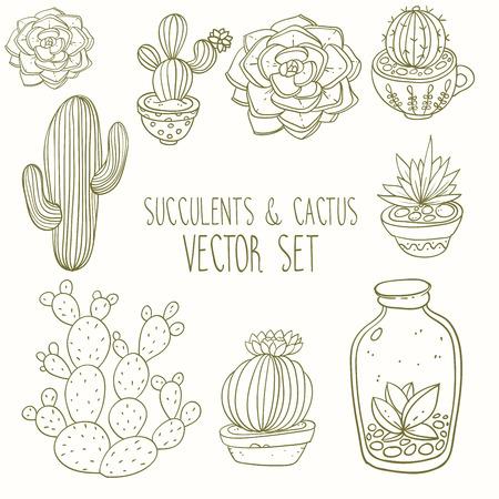 Vetplanten en cactussen vector handbeschilderde set Stock Illustratie