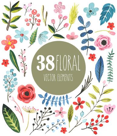 38 floral vector aquarel elementen Stock Illustratie