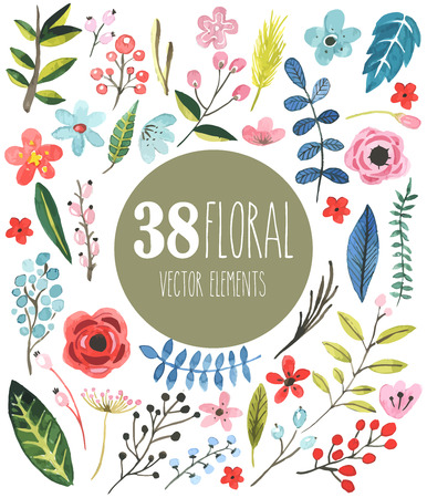 berryes: 38 floral vector watercolor elements Stock Photo