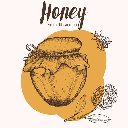 barre: Honey jar, barre, bee, clover, vintage vector set. Engraved organic food hand drawn sketch illustration.