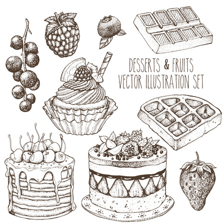 waffle: Dessert fruit sweet set. Cake, cupcake, waffle, strawberry, raspberry, blueberry, currant. Sketch vector hand drawn illustration. Illustration