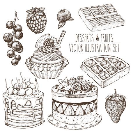 Dessert fruit sweet set. Cake, cupcake, waffle, strawberry, raspberry, blueberry, currant. Sketch vector hand drawn illustration. Illustration