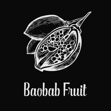 adansonia: Baobab tree, fruit, leaf, nut engraving vintage set. illustration. White on black background.