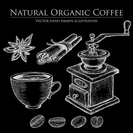 caffeine: Coffee mill ,bean, seed, fruit, cinnamon, star anise, cup. Hot natural organic caffeine drink set. illustration on chalkboard background.