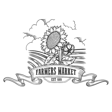 sunflower field: Farmers market badge. Monochrome vintage engraving fresh organic sunflower sign isolated on white background. Sketch vector hand drawn illustration.