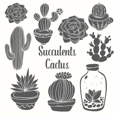 Cactus and succulent in pots. Vector floral set isolated on white background. Indoor plants in a flat style. Object nature flower illustration.
