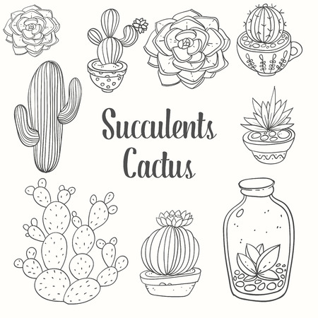 Cactus and succulent in pots. Vector floral set isolated on white background. Indoor plants in a line style. Object nature flower illustration. Иллюстрация