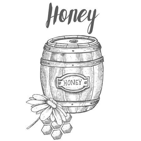 Honey jar, barrel, honeycomb, chamomile, vintage vector set. Engraved organic food hand drawn sketch illustration. Иллюстрация