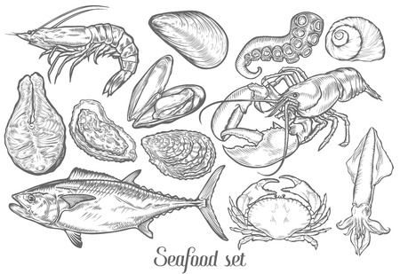 Salmon, tuna fish steak, crab, mussels, oysters,prawn, shrimp, squid, lobster, cancer, omar, octopus, clam sketch vector set. Hand drawn engraved illustration. Marine Healthy seafood. Organic product Ilustração