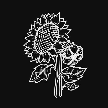Zonnebloem graveren. Vector hand getrokken zonnebloemen illustratie geïsoleerd op een zwarte achtergrond in retro-stijl
