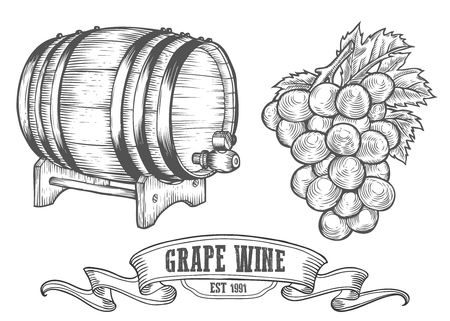 alcoholic drink: Wine set. Winemaking products in sketch retro vintage style. Hand drawn Vector sketch illustration with wine barrel, grapes, grape twig. Classical alcoholic drink.