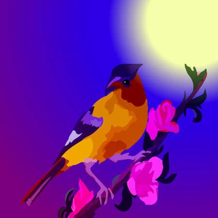 night bird: A beautiful bird on a tree branch at night under the moon Illustration