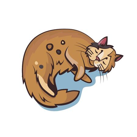 A sleeping cat. Vector illustration.