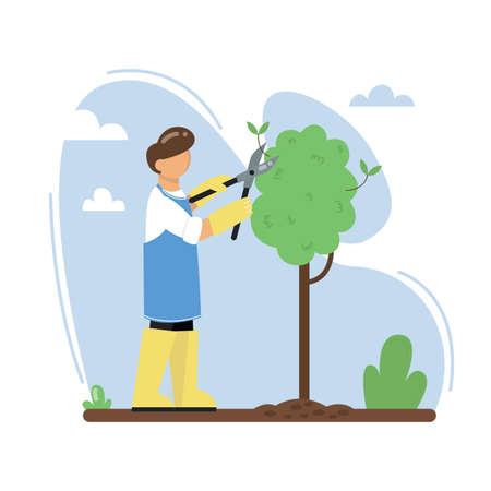 A gardener cuts a tree in the garden. A man pruning branches of a tree with pruner. Vector illustration.