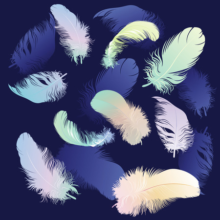 falling down: Colored Feather Set,  illustration Illustration