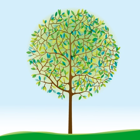 broadleaved tree: Green Tree On Meadow Illustration
