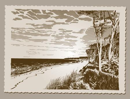 baltic: Beach Postcard