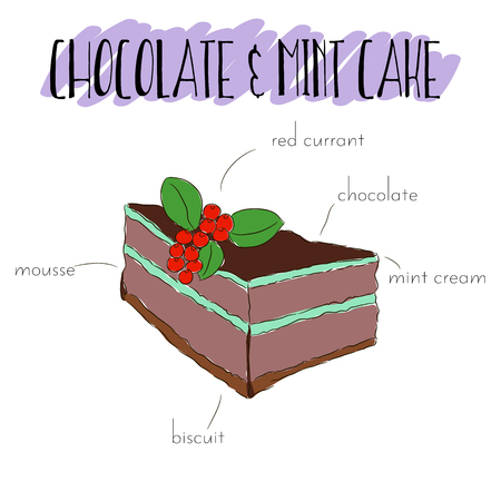 red currant: Slice of isolated chocolate and mint cake with chocolate, biscuit, red currant.