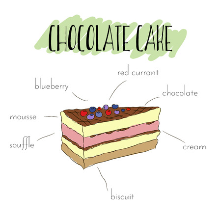 souffle: Slice of chocolate cake with dark chocolate drip, biscuit and red currant. Vector hand drawn isolated illustration. List of main ingredients of chocolate cake.  Unique outline sweet dessert. For flayer, invitation, poster.