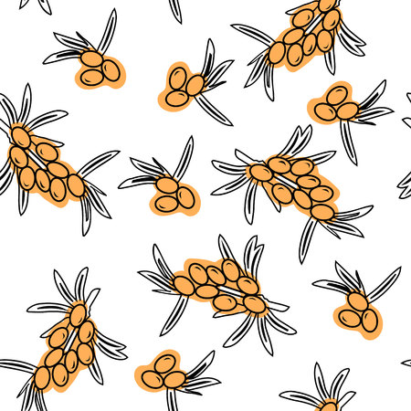 Sea buckthorn hand drawn seamless black and white pattern. Medicinal berry background. Good for cover, wallpaper, textile and wrapper.