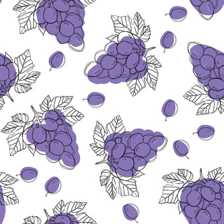 Blue ripe grape berries, seamless pattern isolated on white background.