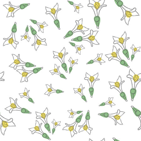 Seamless pattern with fresh woodruff flowers. Good for backdrop, textile, wrapping paper, wall posters. Continuous line drawing.