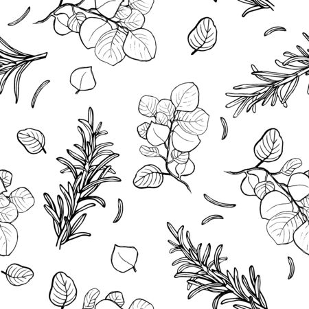 Seamless pattern of eucalyptus and rosemary green leaves, herbs, berries tropical heel hand drawn silhouette.
