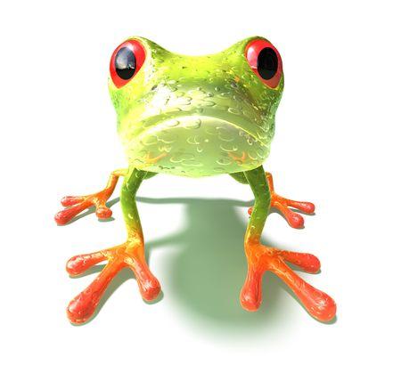 Frog Stock Photo - 3973091