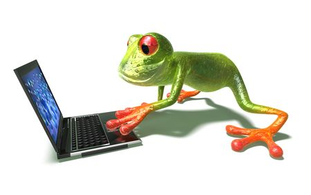 Frog with a laptop photo