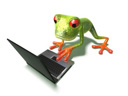 Frog with a laptop Stock Photo