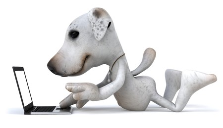 jack russel: Fun dog with a laptop