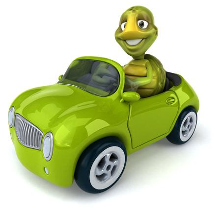 zoo traffic: Fun turtle