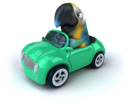 zoo traffic: Fun parrot