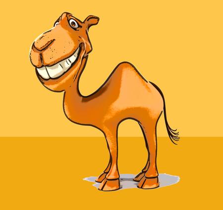 camel desert: Fun camel
