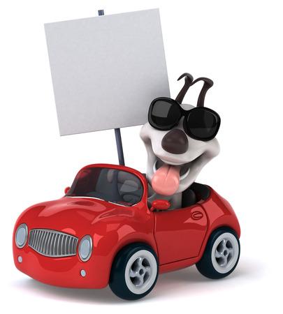 car speed: Fun dog Stock Photo