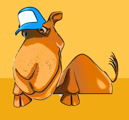 cartoon camel: Fun camel