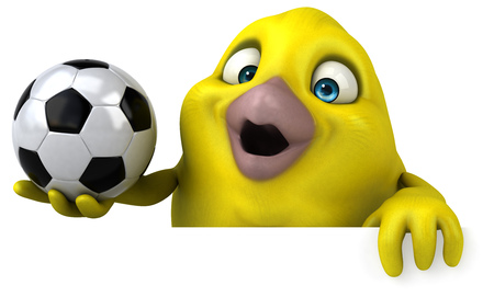 canary bird: Fun bird