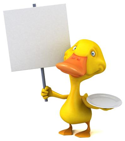 intermittent: Duck Stock Photo