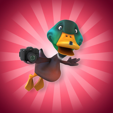 Cartoon duck flying with a camera