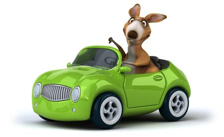 zoo traffic: Fun kangaroo Stock Photo